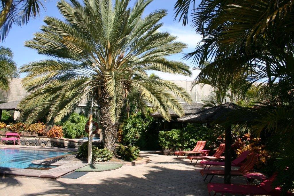 Villa Trece Piedras - zitje bij het zwembad