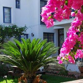 Appartementen Bay view
